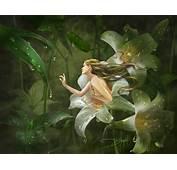 Fantasy Art Mirrors Of Twilight  2D Digital