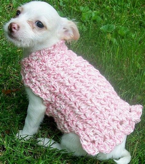 crochet pattern dog jumper love this crochet crazy pinterest dog sweaters
