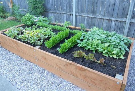 Outdoor Raised Planters by How To Build A Raised Planter Bed For 50 For Your