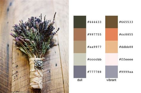 color palette creator les 25 meilleures id 233 es de la cat 233 gorie palette creator