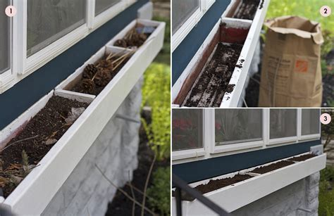 soil for window boxes gardening basics planting window boxes container gardens