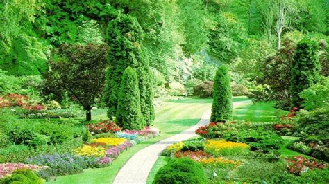Graceful Green Summer Garden Landscape Design Facebook Green Garden Design