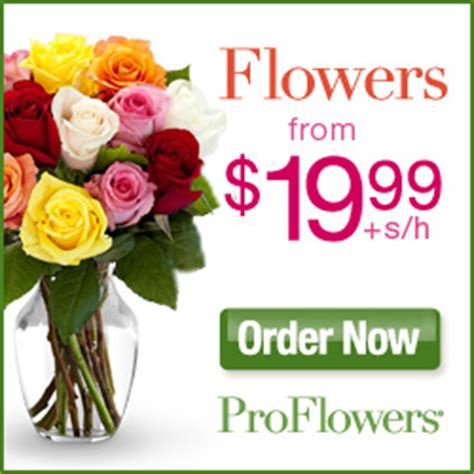 flower coupon codes proflowers gutscheine für schwangere