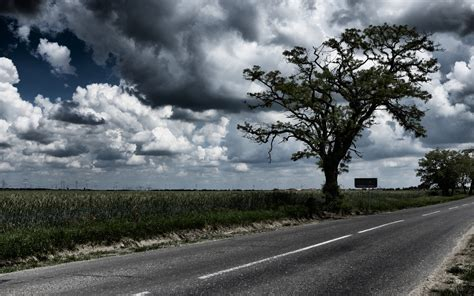 pictures images cloudy field 2 free stock photo domain pictures
