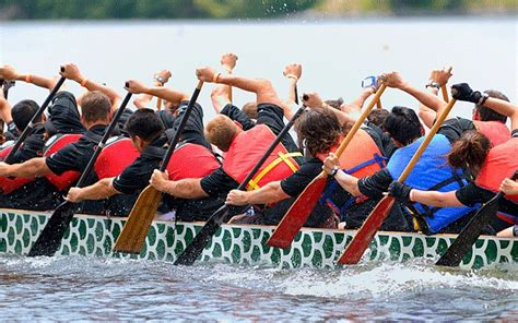 dragon boat racing a corporate activity with a royal seal - Dragon Boat Racing Technique Video