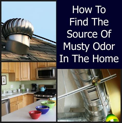 musty smell in house musty odor in a home home ec 101