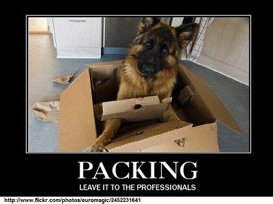 To Leave To The Professionals by Packing Leave It To The Professionals Moving Memes