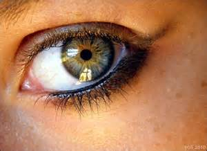 what is the most eye color eye color what are the rarest eye colors yahoo
