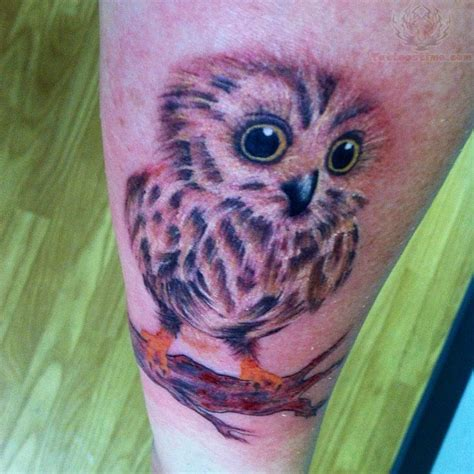 baby owl tattoo owl baby sit on branch tattoo
