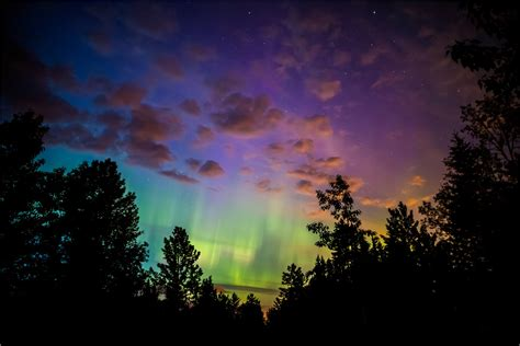 northern lights near me lights near me valley gardens palmou