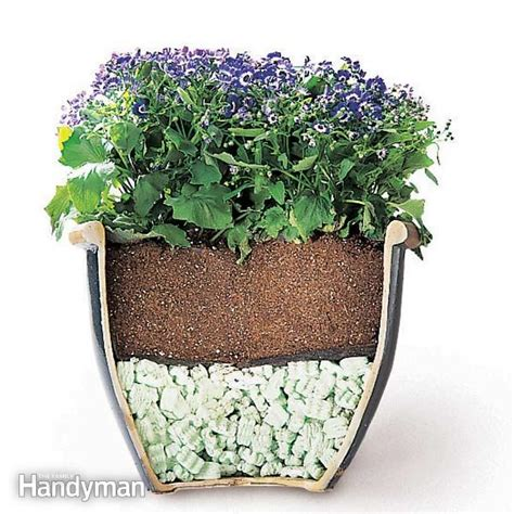 tips  moving heavy potted plants