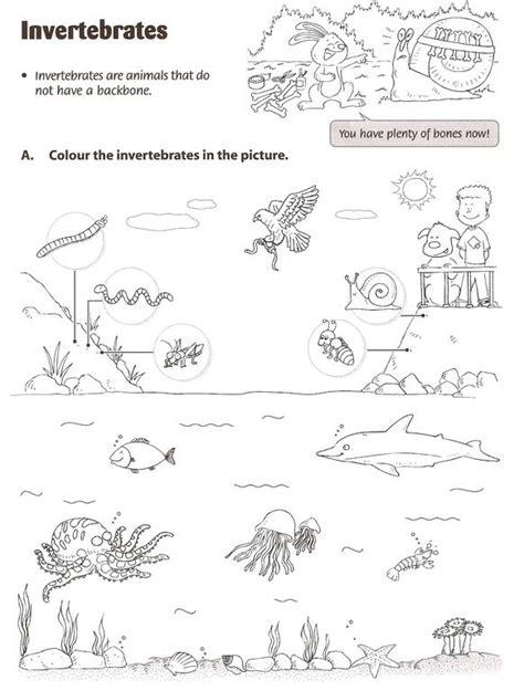 let s go invertebrate animals