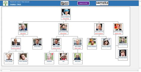 british royal family tree and line of succession a full look time
