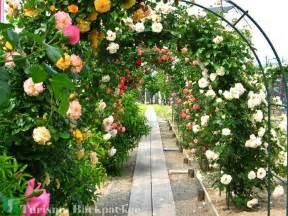 image gallery jardin de rosas
