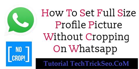 how to set your whatsapp profile picture in full size 100 working set full size profile picture on whatsapp