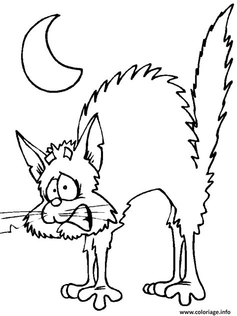 halloween animals coloring page coloriage chat peur halloween dessin