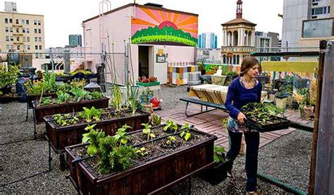 Come Creare Un Orto In Terrazzo by Fare L Orto Da Balcone O Terrazzo