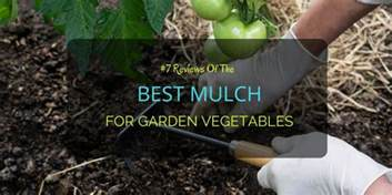 7 reviews of the best mulch for garden vegetables