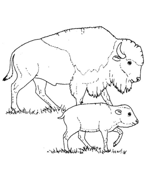 Free North America Color Page Coloring Pages America Coloring Pages