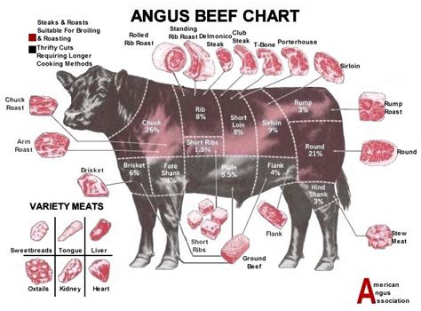 cow cuts diagram beef cuts chart grill thrill