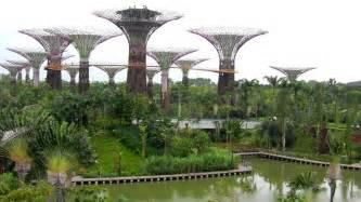 gardens by the bay nouveau jardin botanique de singapour