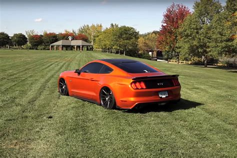 mustang with 2015 ford mustang gt with niche wheels