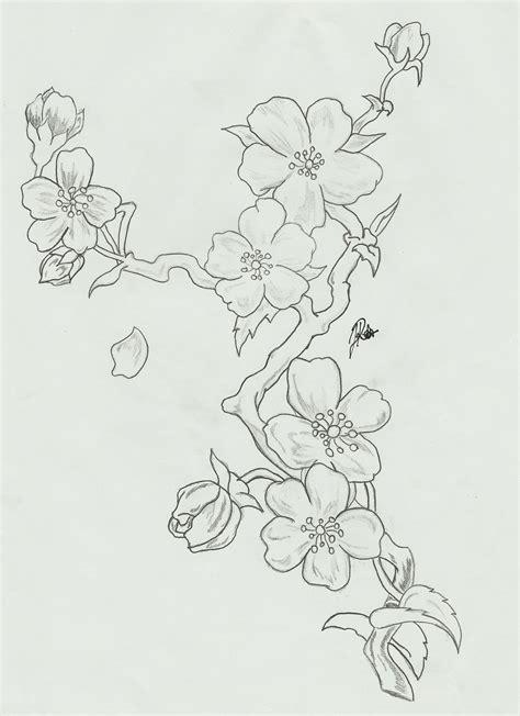 Cherry Blossom Branch Drawing Outline by Cherry Blossoms Branch Sketch By Faytofallstars On Deviantart