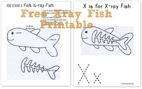 printable animal x rays x ray fish coloring pages