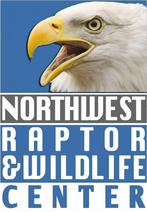 northwest raptor wildlife center nonprofit in sequim wa