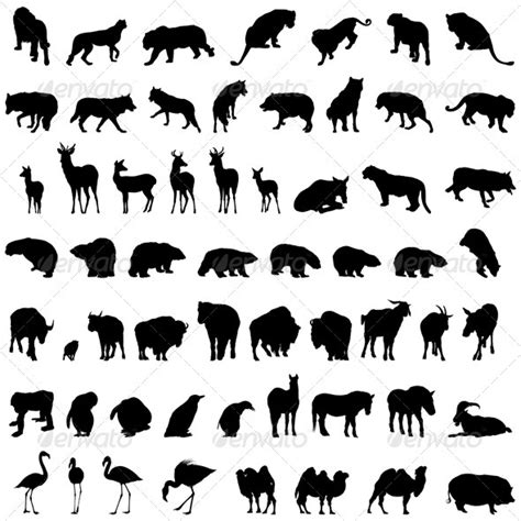 animal silhouette set graphicriver