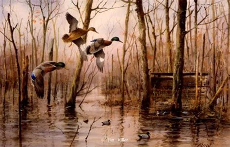 Wst 9906 Forest Print 17 best images about duck pintings on watercolors mallard and pine flooring