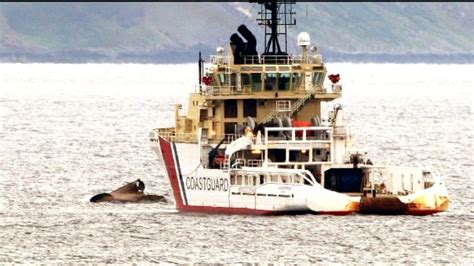 fishing boat accident scotland fishing boat accident verdict border itv news