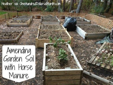 Amending Garden Soil With Horse Manure Gardening Pinterest Amending Soil For Vegetable Garden