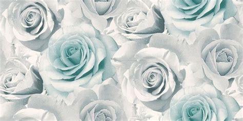 wallpaper grey roses roses 119503 albany wallpapers a beautiful photo