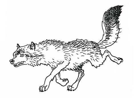 coloring books for wolves more advanced animal coloring pages for teenagers tweens boys zendoodle animals wolves practice for stress relief relaxation books wolves coloring pages coloringpages1001