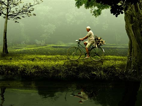 Berapakah Green Coffee free photo bike nature green free image on