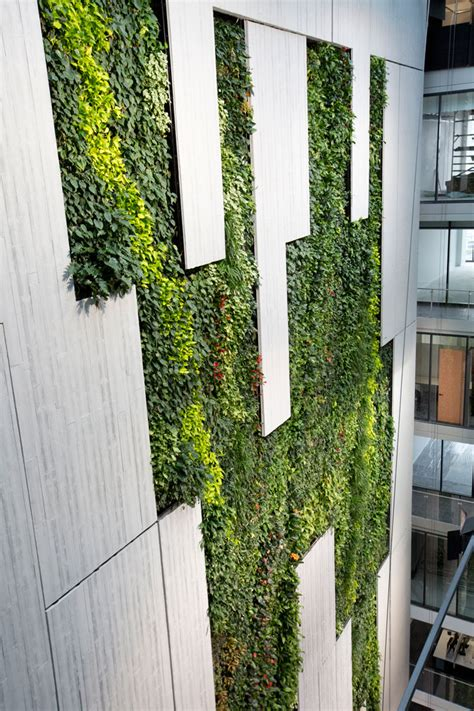 tower  australias tallest indoor greenwall