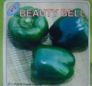 Benih Paprika Di Malang paprika hijau bel bibit unggul