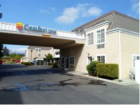 comfort inn redwood city booking com redwood city hotels with pools
