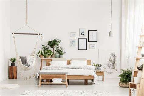 piante per camere da letto 5 piante per la da letto piante appartamento
