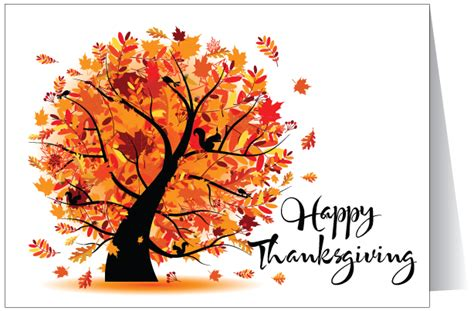 thanksgiving card thanksgiving greeting cards