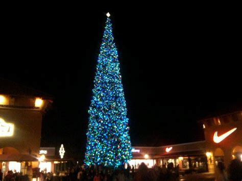 arizona tallest christmas tree in the nation the