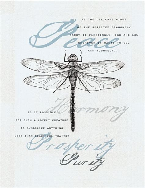 what does a dragon tattoo mean 419 best images about dragonfly quotes on