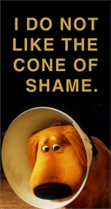 Cone Of Shame Meme - random image thread xxxviii and there go my nipples again