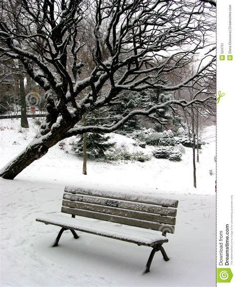 bench winter winter bench 1 stock image image 524751