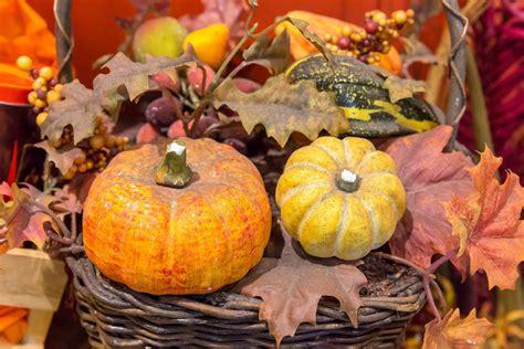 wann ist thanksgiving in amerika thanksgiving in america bilder und fotos creative