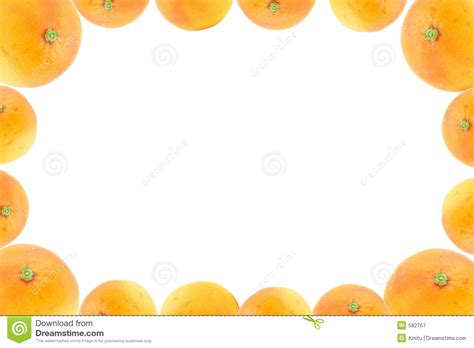 Decorating Program high resolution frame decorated with orange fruits royalty