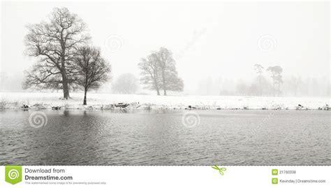 imagenes de invierno triste paisaje triste del invierno fotos de archivo libres de