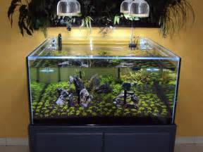 Orphek ? PR72 Planted Aquarium LED Lighting