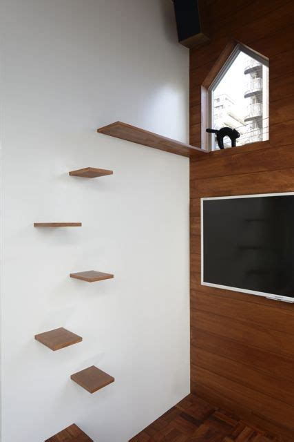 Cat Shelf Wall by Modern Cat Tree Alternatives For Up To Date Pets